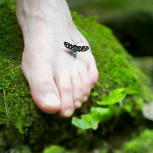 voetreflexbehandeling